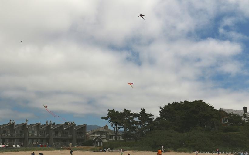 Kites at Cannon Beach